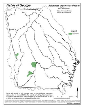 Gulf sturgeon Region Map