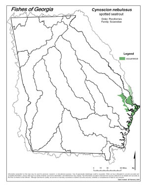 spotted seatrout Region Map