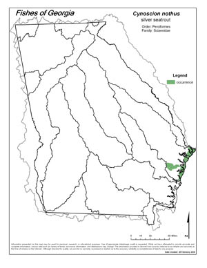 silver seatrout Region Map