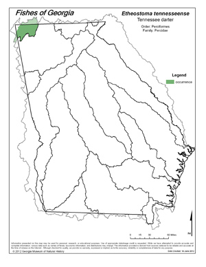Tennessee darter Region Map