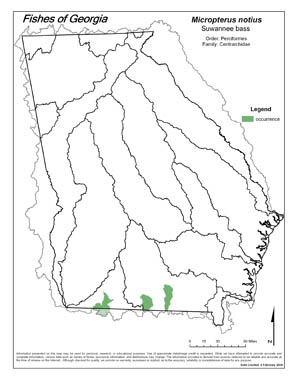 Suwannee bass Region Map