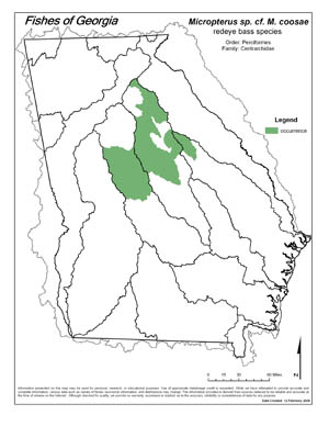 redeye bass (Altamaha / Ogeechee) Region Map