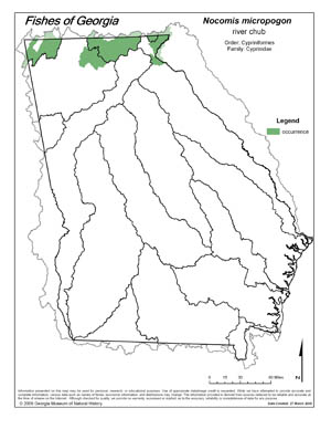 river chub Region Map