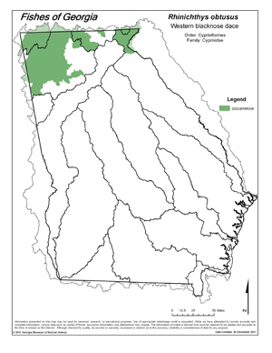 western blacknose dace Region Map