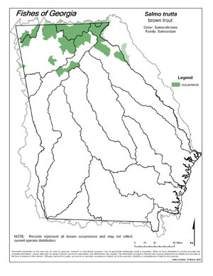 brown trout Region Map